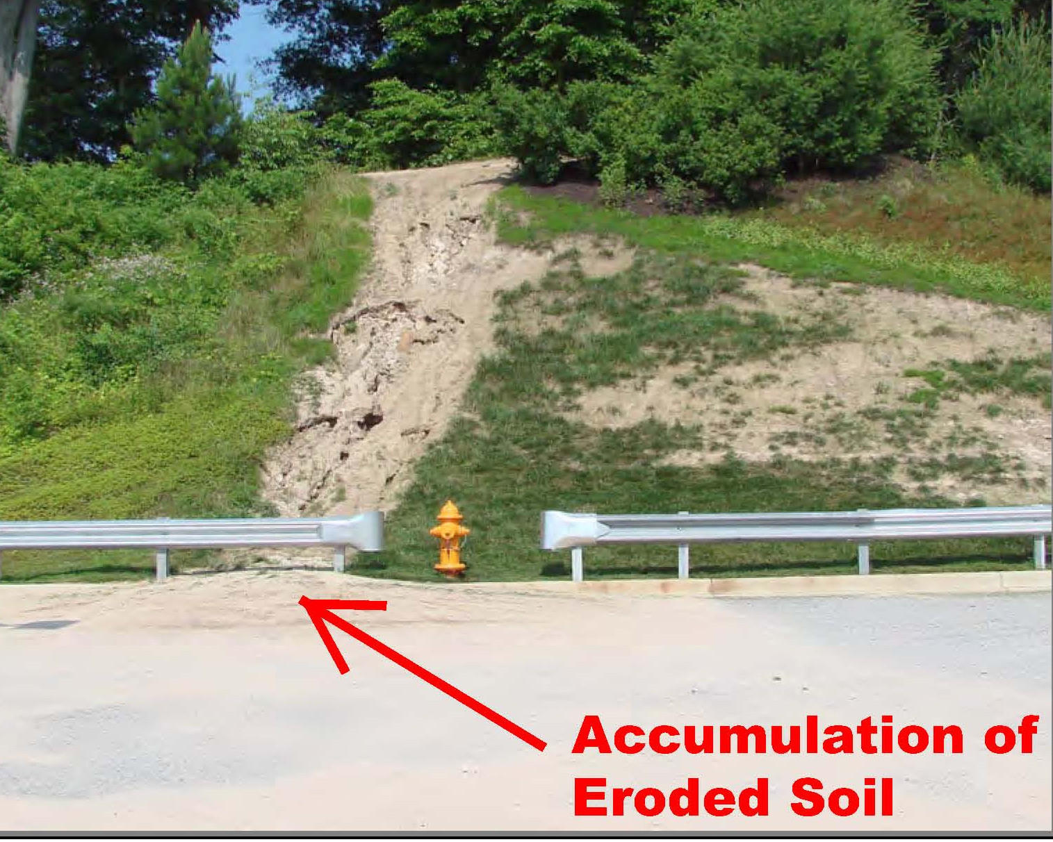 Survey found bare soil at construction sites like this one, where erosion is carving a gully in a slope, with dirt being washed onto pavement.