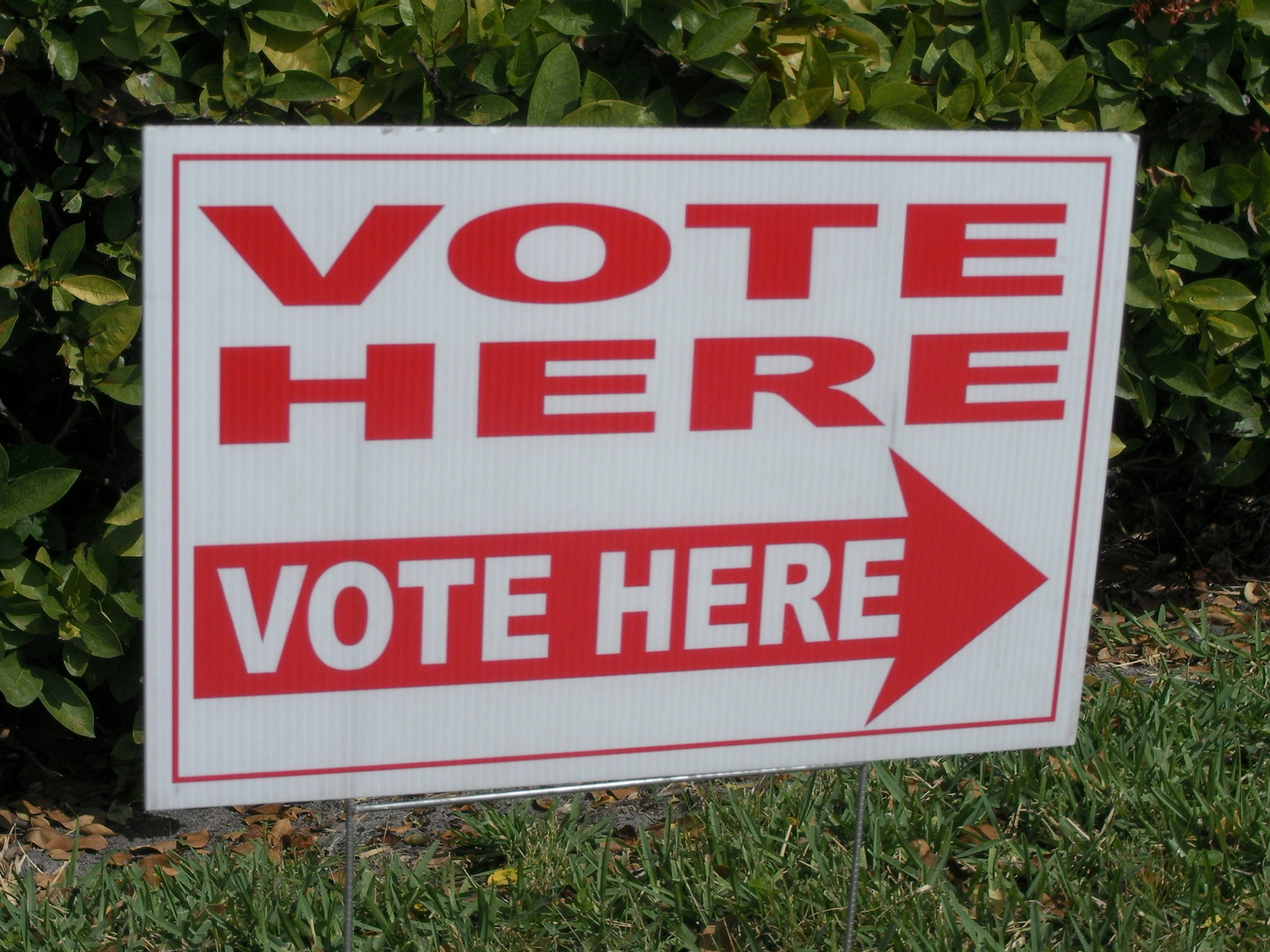 Register To Vote Online In Palm Beach County Florida