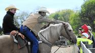 Harrison Mule Days at the Carroll County Equestrian Center [Images]