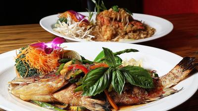Thai Spice lights the way