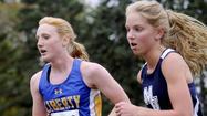 Girls cross country: Rinehart, Lions claim county crown