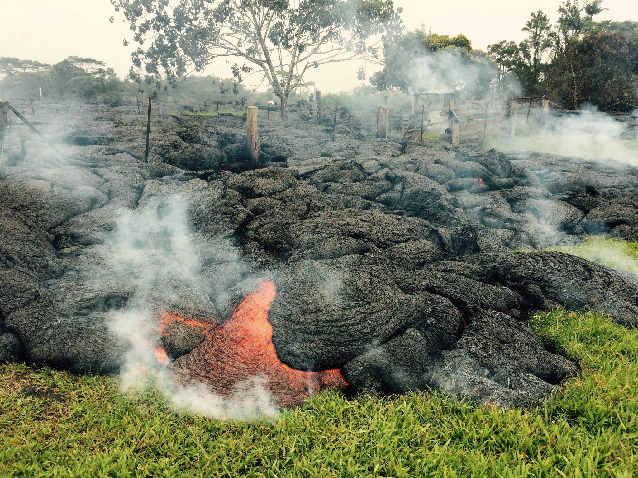 Hawaii pair took photos, prodded fiery lava with golf clubs: police