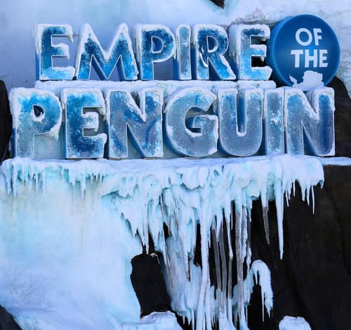 """Penguins acclimate to their new habitat at the """"Antarctica: Empire of the Penguins"""" attraction, during an Orlando Sentinel exclusive first-look preview, Wednesday, May 15, 2013. The attraction is scheduled to open Friday, May 24.  (Joe Burbank/Orlando Sentinel)"""