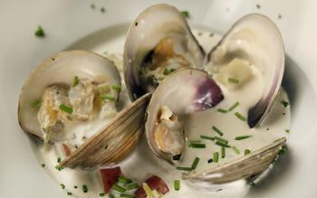 Fin's clam chowder