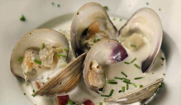 Fin's clam chowder