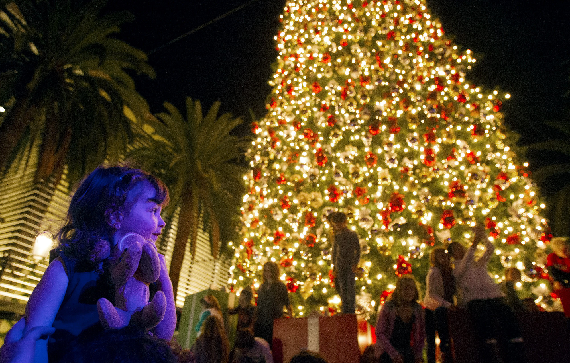 Christmas Tree Lighting Fashion Island