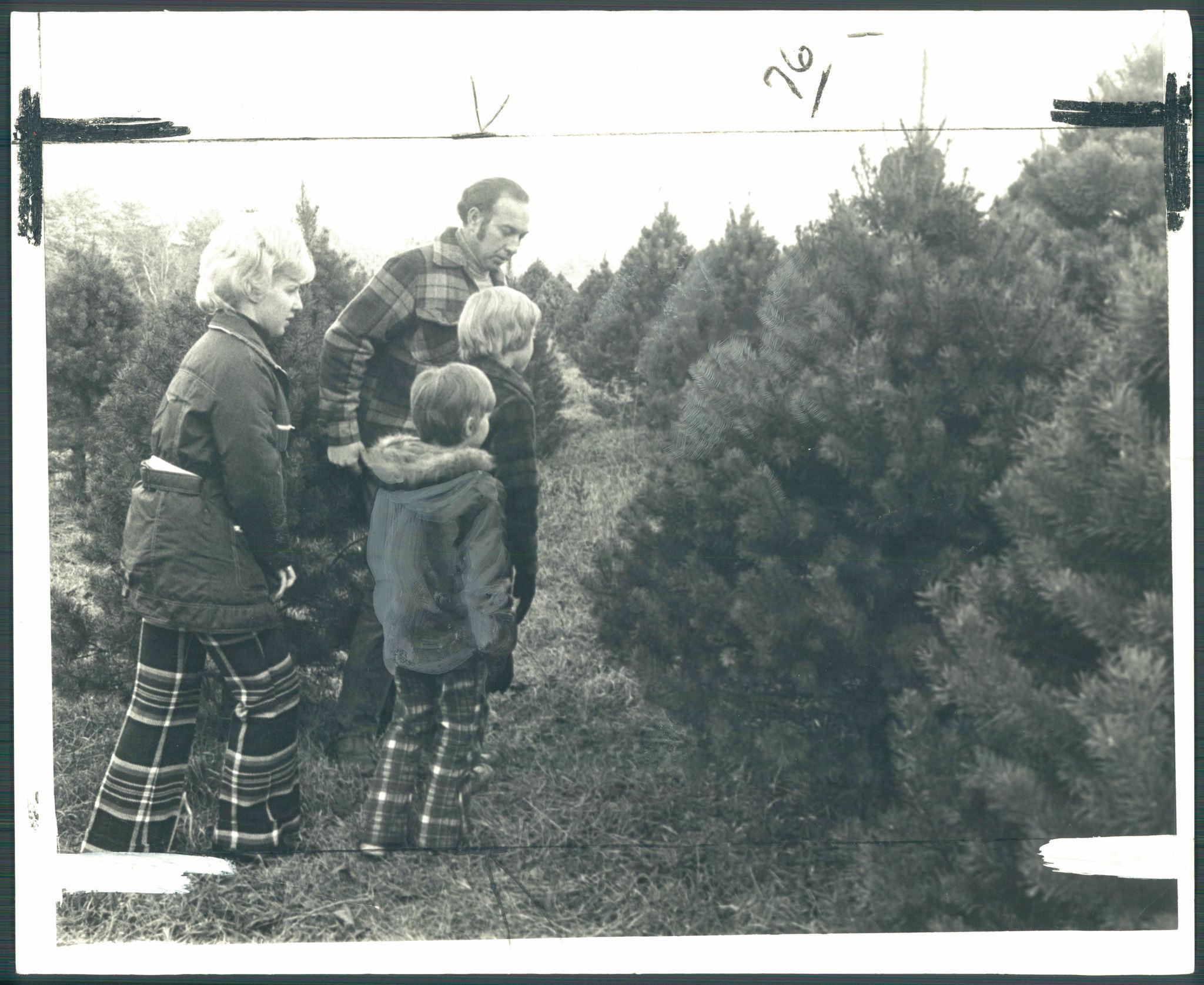 Retro Baltimore, O Christmas tree...