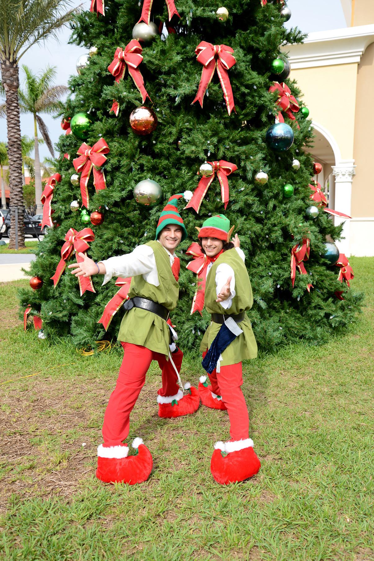 Florida christmas ornament - Florida Christmas Ornament 38