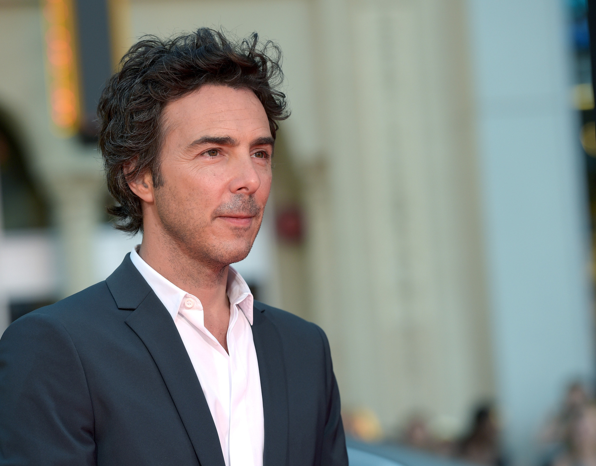 shawn levy movies