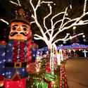 Pictures: Holiday lights in Florida