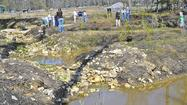 County to issue stormwater project grants