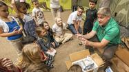 Threatened turtles, saved from smugglers, meet kids in Millersville