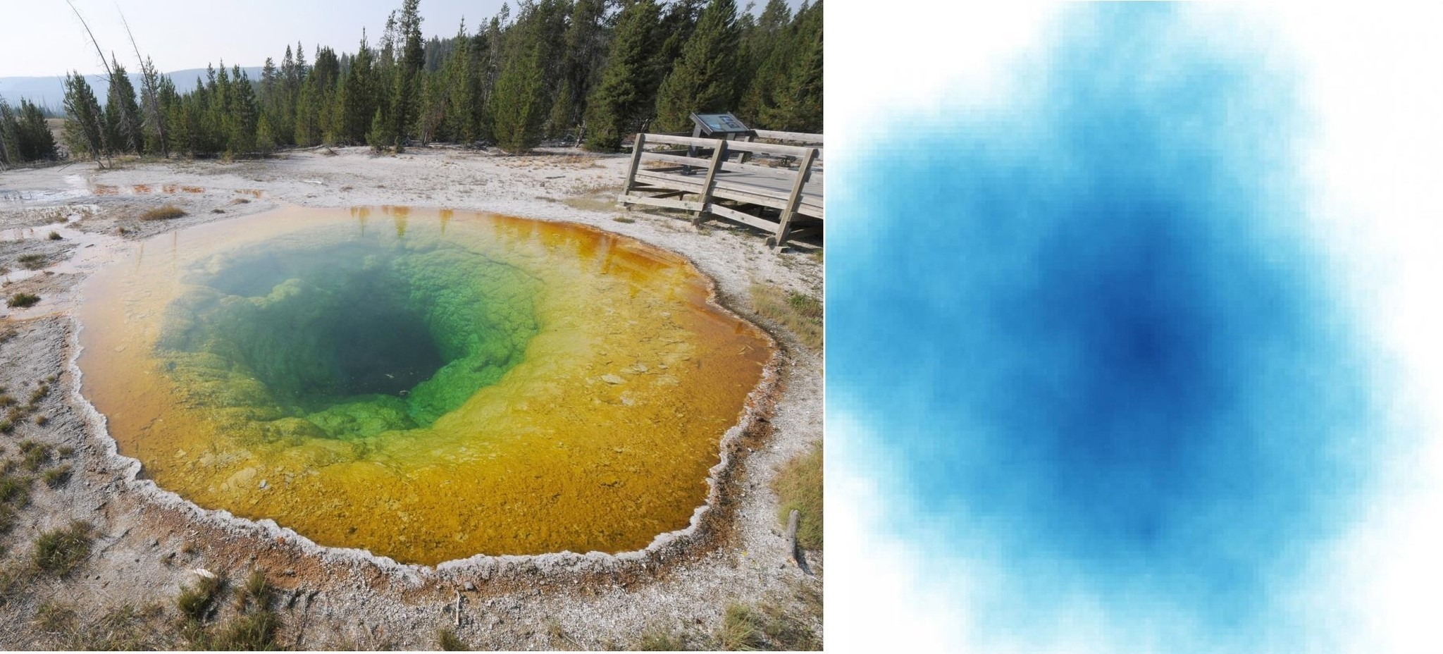 Putting the color in Yellowstone's famed thermal springs