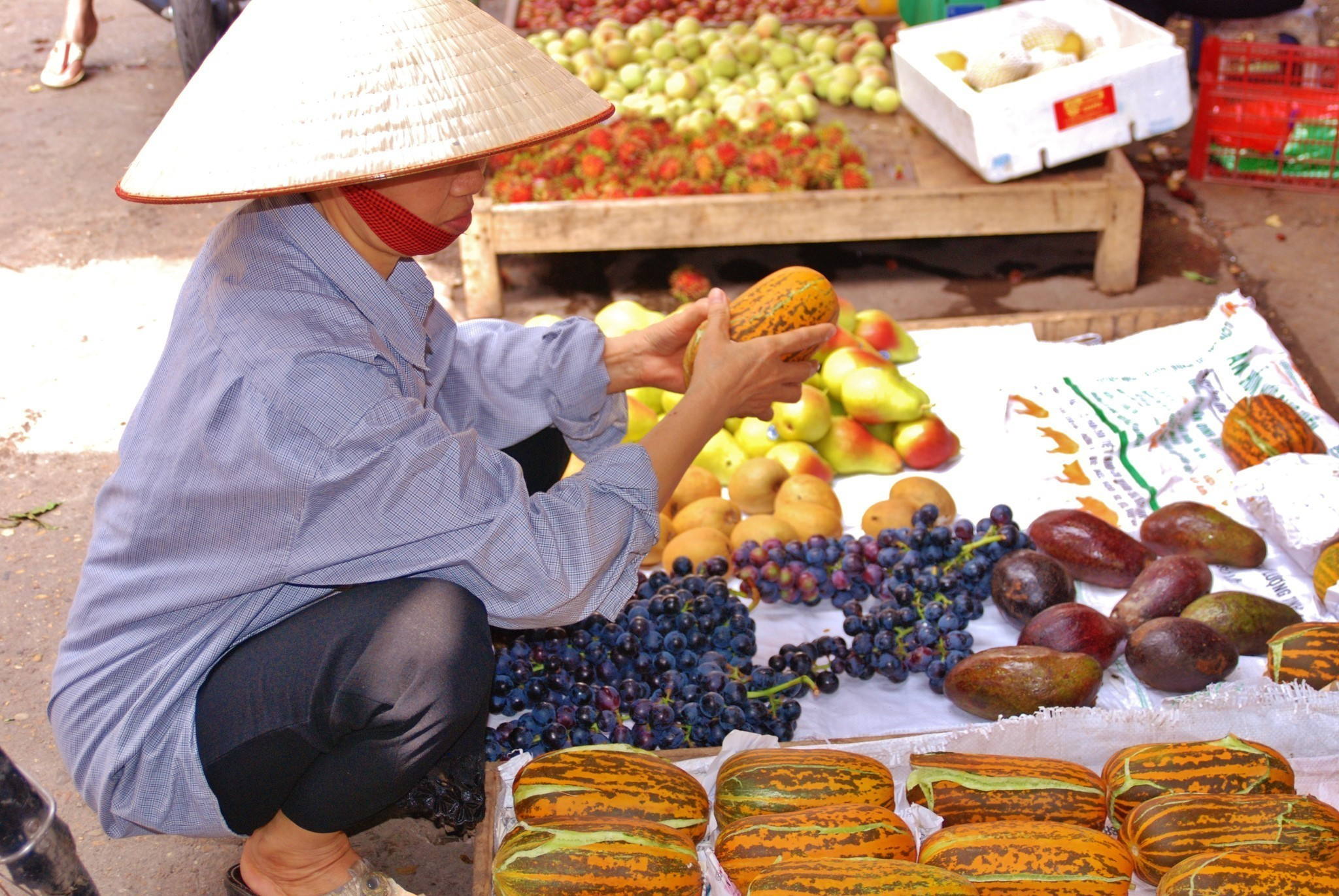 Vietnam: Culinary tour links travelers with food, culture