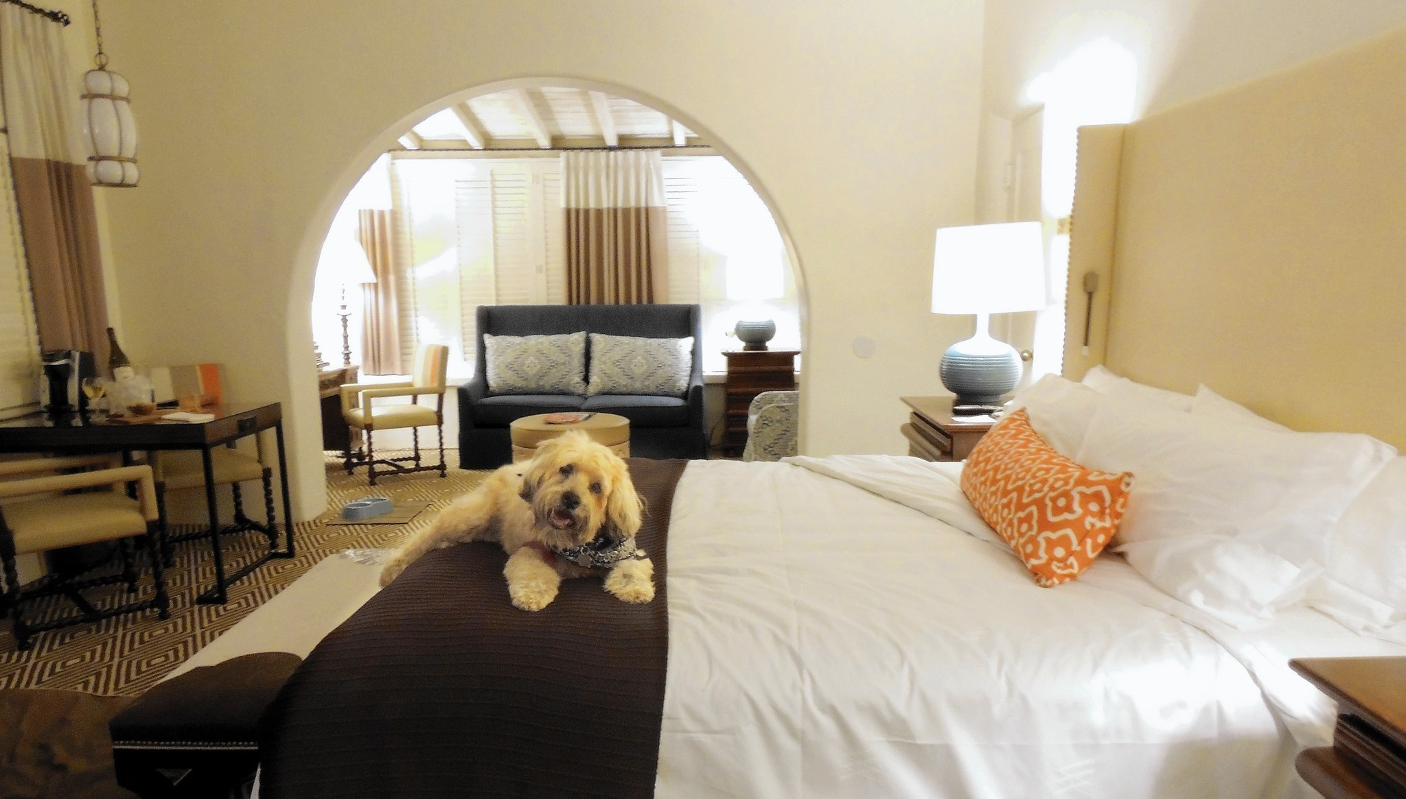 La Quinta Resort & Club is an oasis for human and dog