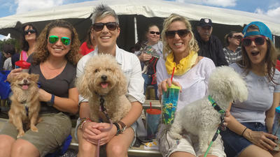 Doggie Palooza in Plantation