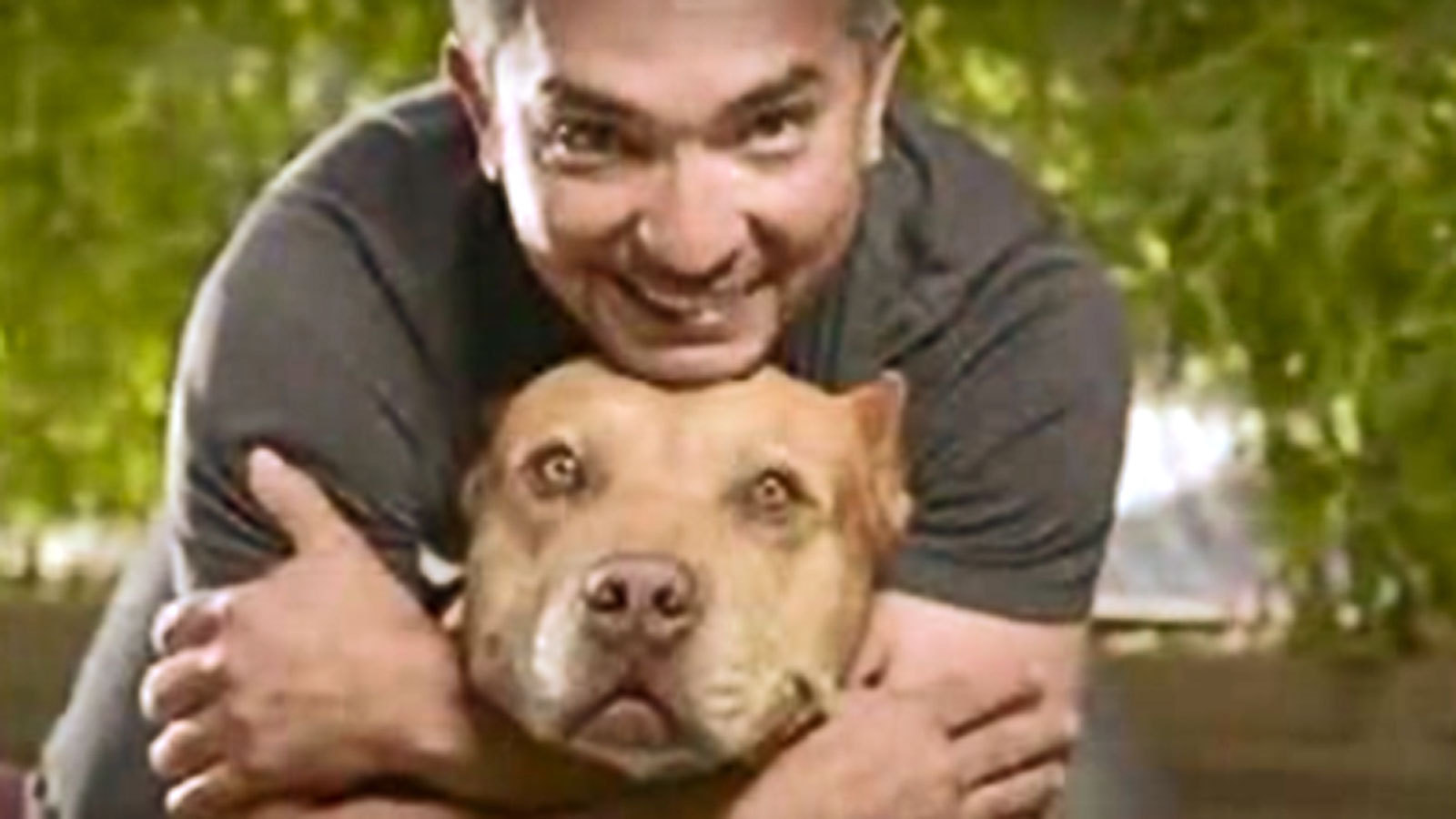 cesar millan national geographic