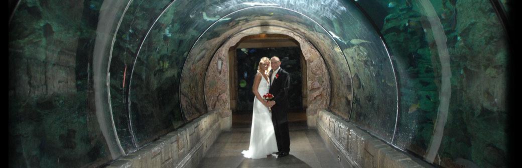 Weddings las vegas la times junglespirit Gallery