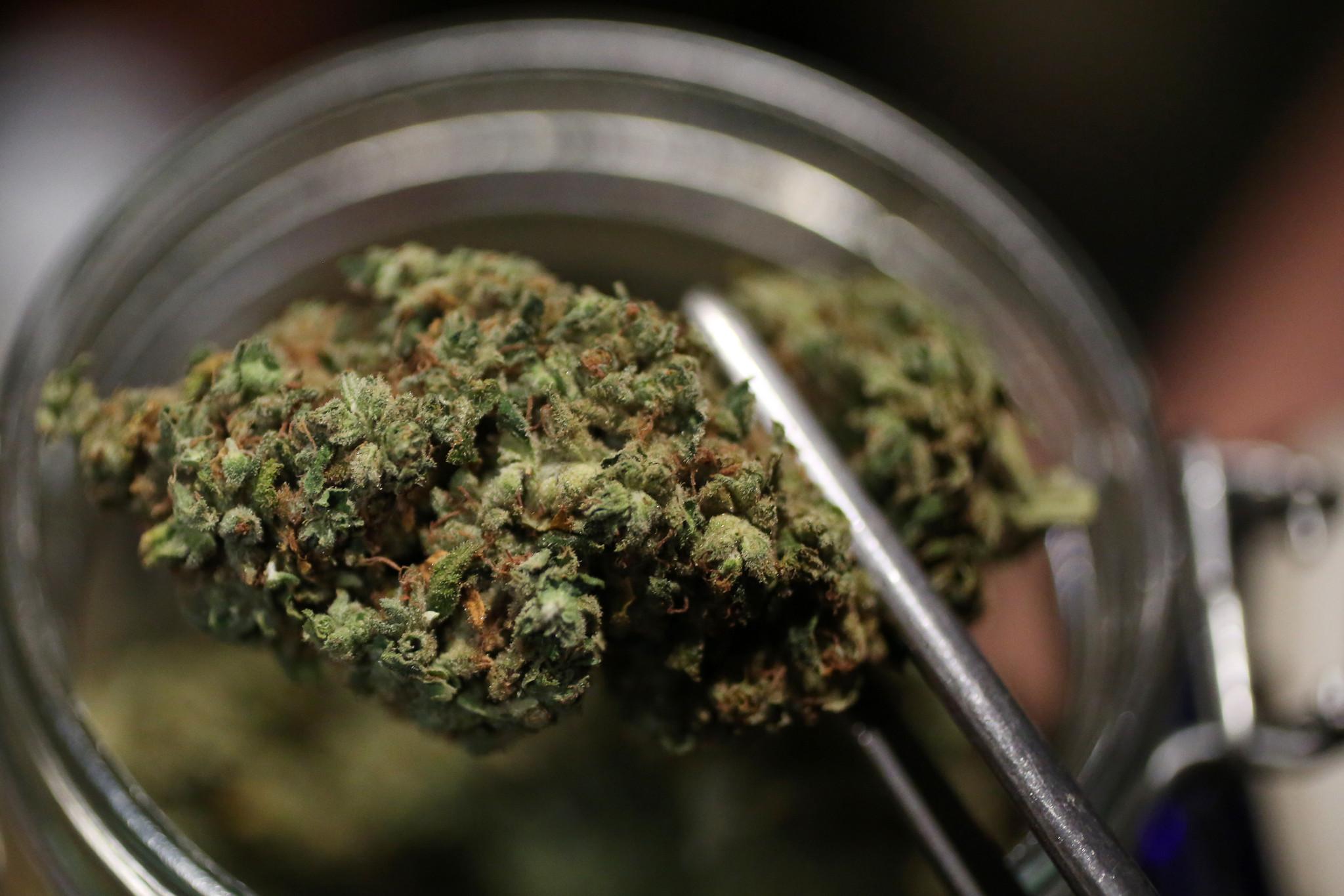 FBI approves Illinois marijuana business background checks