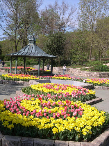 "Located in Wheaton Regional Park, <b><a href=""http://findlocal.baltimoresun.com/listings/brookside-gardens-conservatories-wheaton"">Brookside</A></b> is a 50-acre public display garden. Areas include an aquatic garden, a butterfly garden, a children's garden, a Japanese-style garden and a fragrance garden.<br><br>