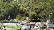 Solstice Canyon hike in Malibu takes in ruins of old estate