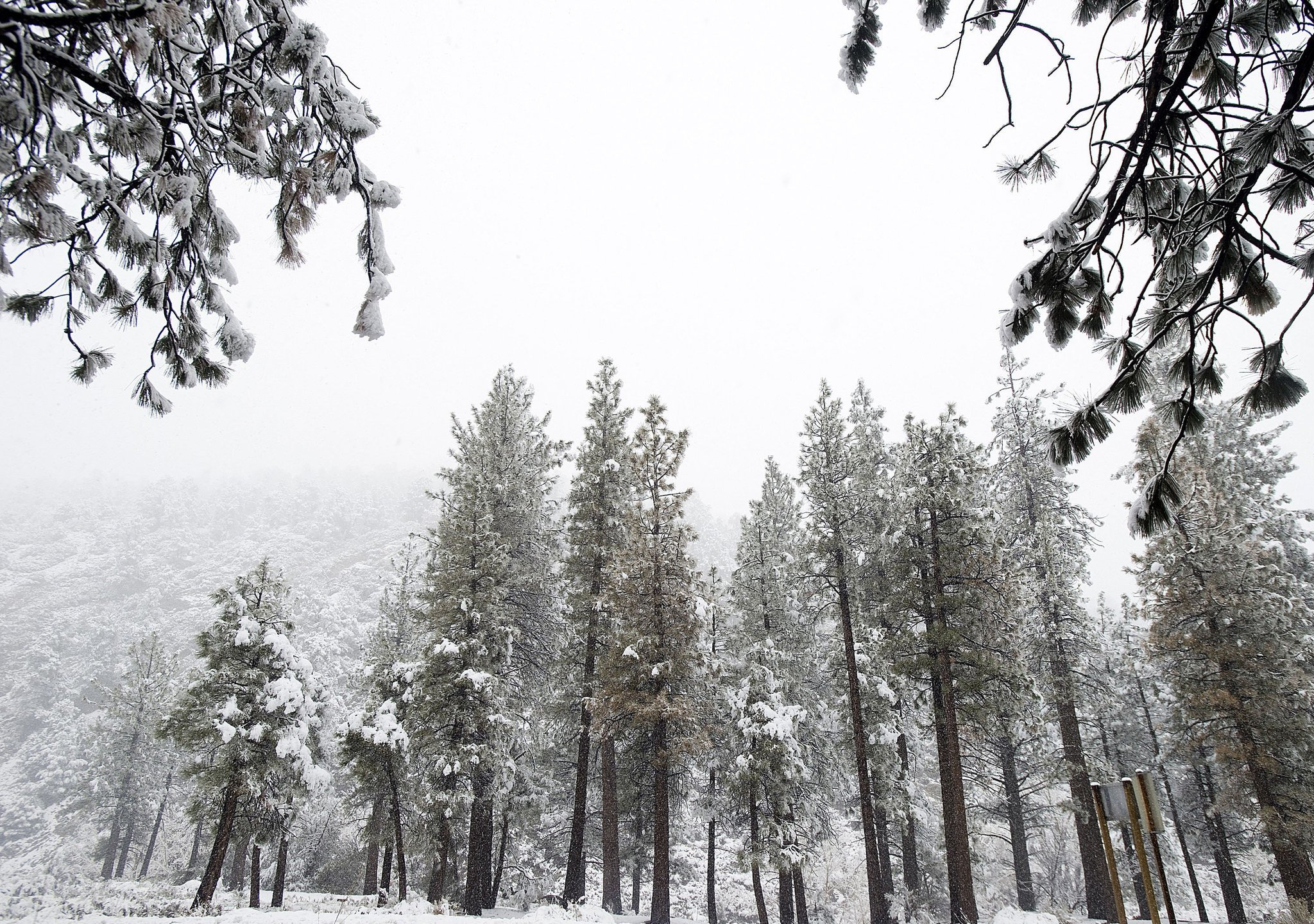 California Snow Story - One Good Summer EP