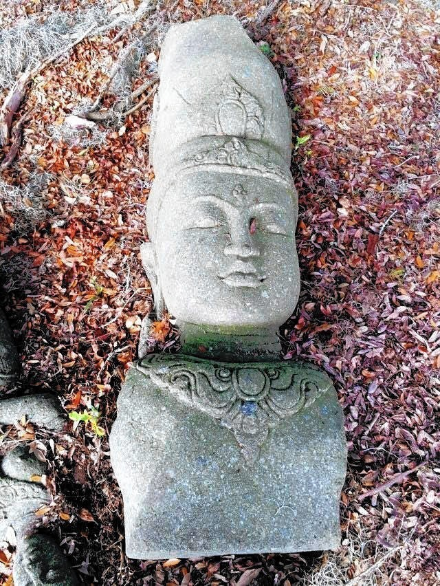 Mysterious apopka sculptures may be years old