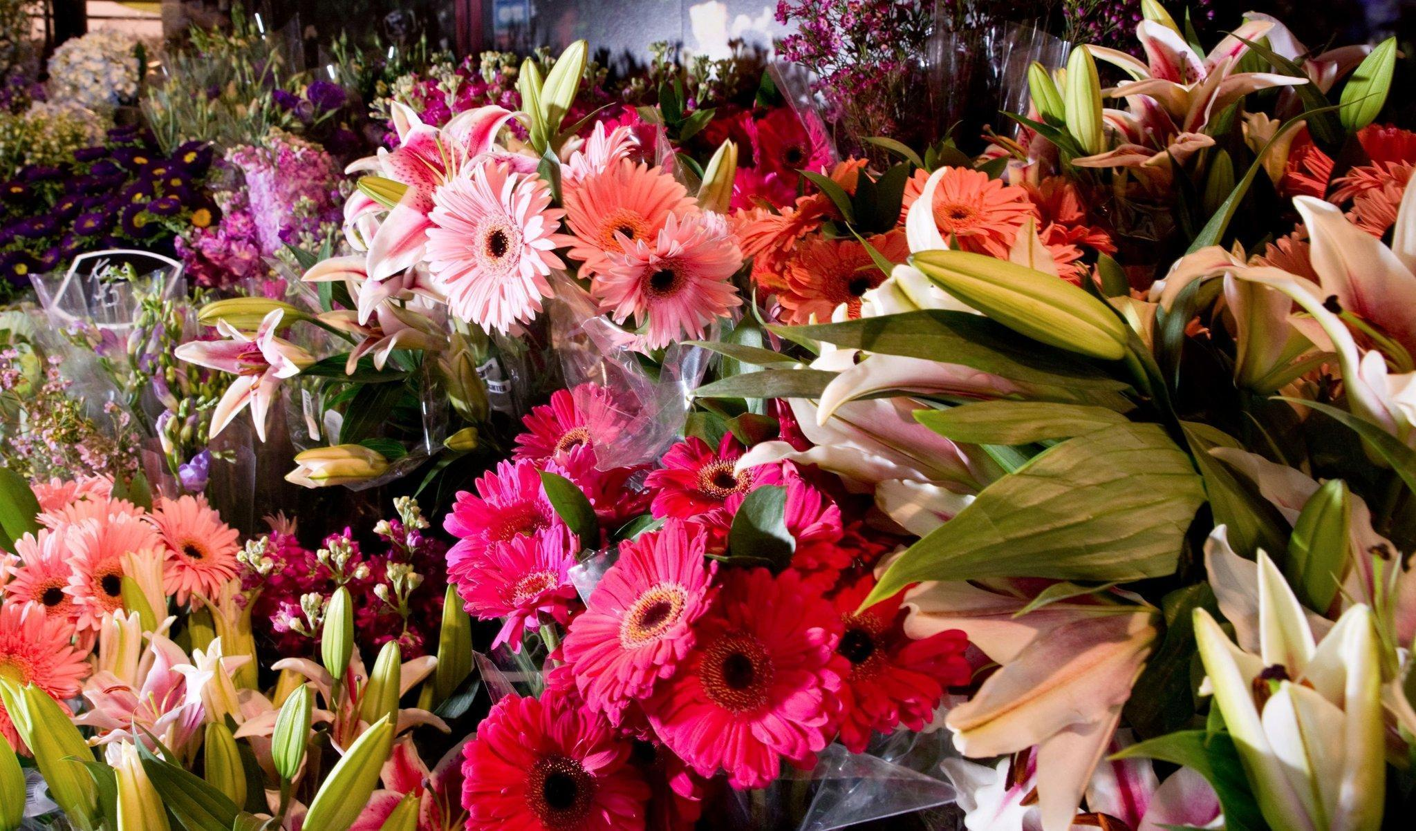 Chicago Flower & Garden Show to bloom with ideas Chicago
