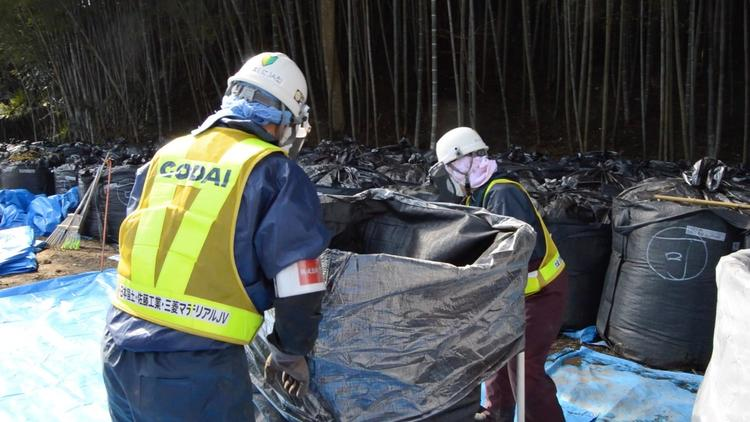 After 4 Years, Fukushima Nuclear Cleanup in Japan Remains Daunting, Vast