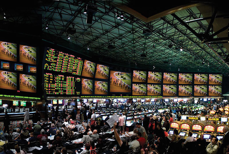 college football pick forum westgate sportsbook online