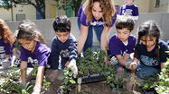 Chamlian students commemorate Armenian Genocide with 100 forget-me-not flowers