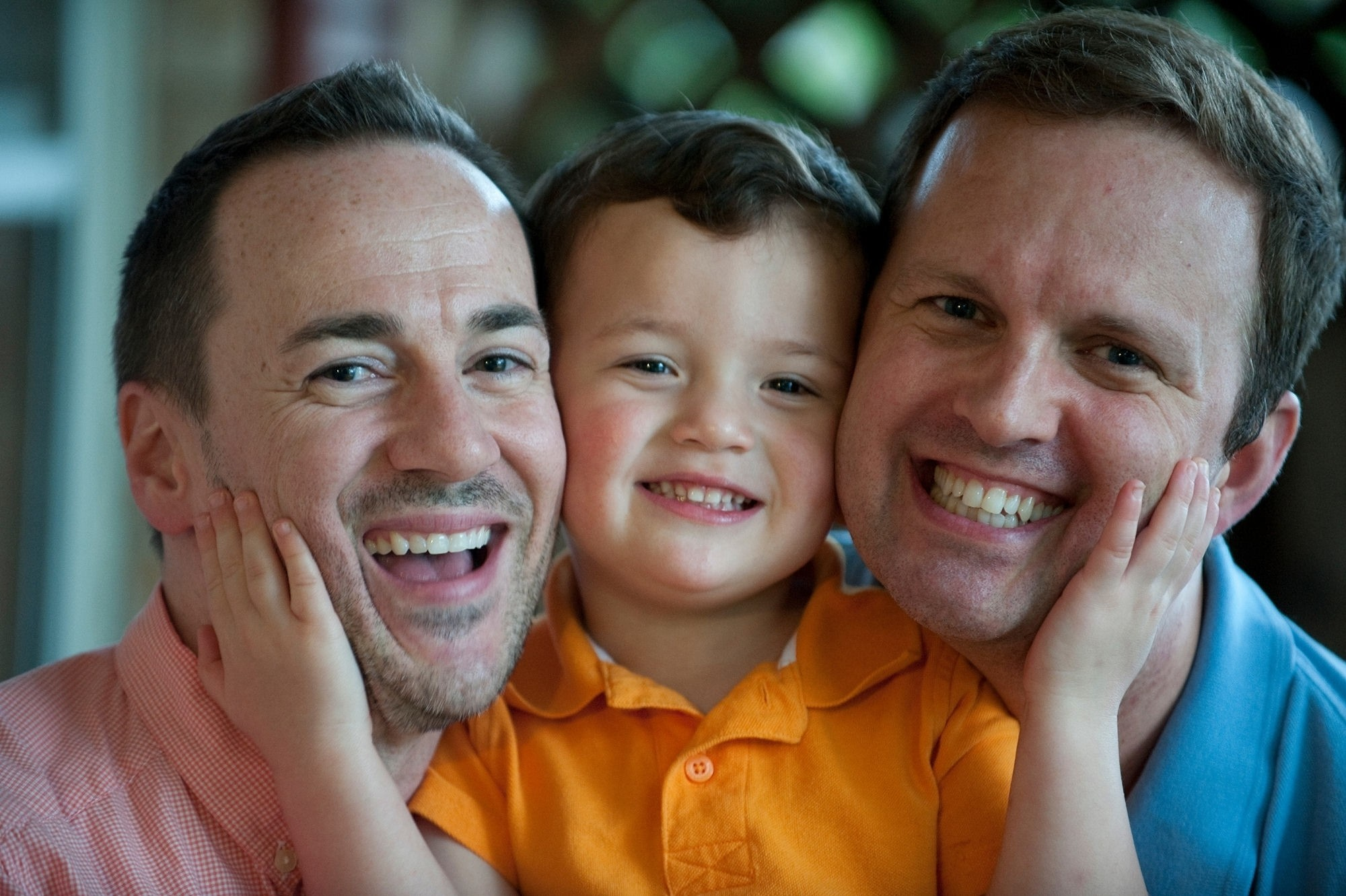 laws on gay adoption