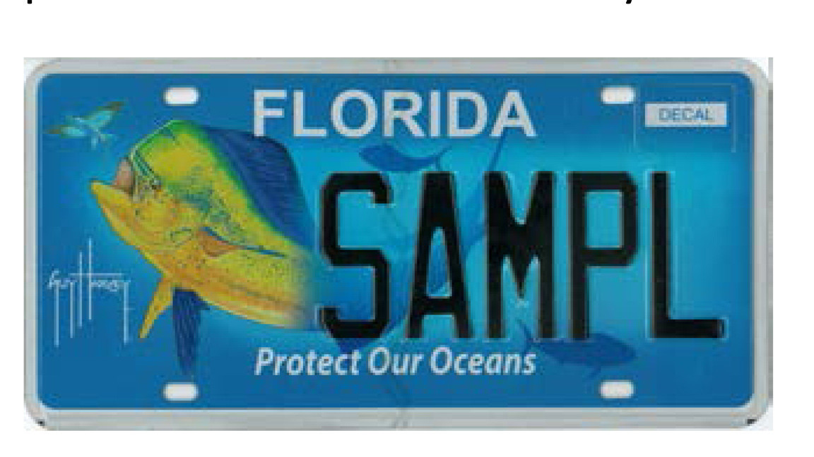 New Florida specialty license plate designs released - Orlando Sentinel