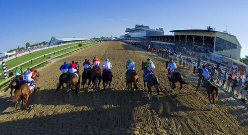 <p>The horses break from the starting gate in the 135th Preakness Stakes at Pimlico Race Course.</p>