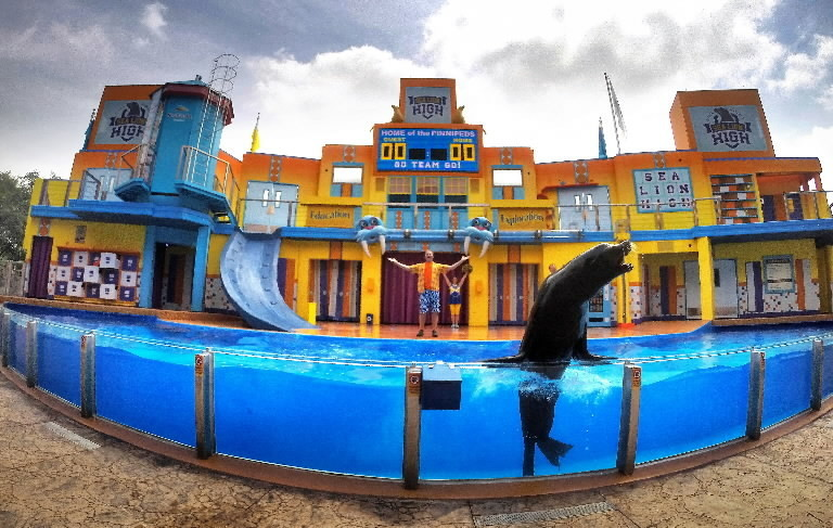 Image result for Clyde and Seamore's Sea Lion seaworld orlando