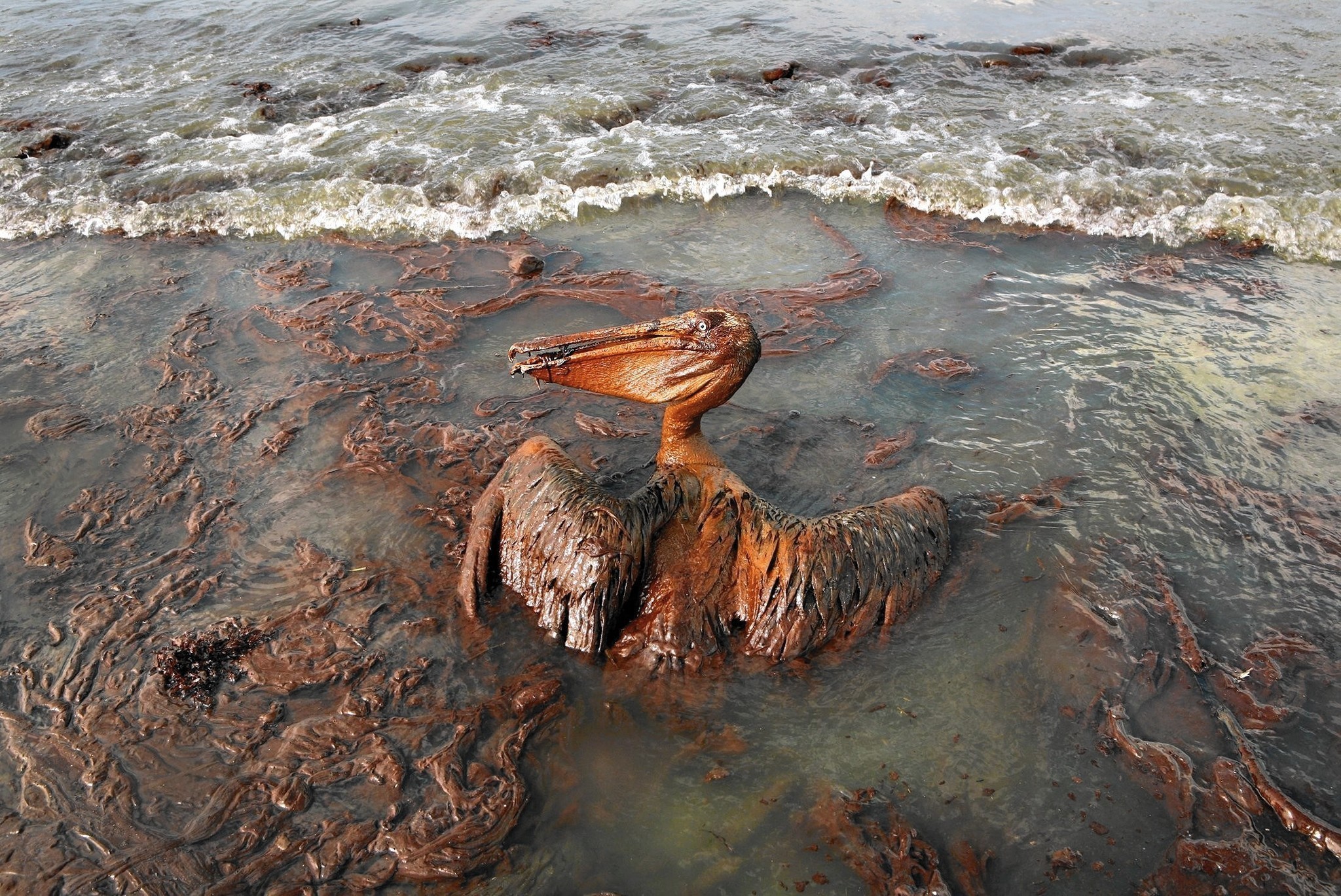 Five Years After Bp Spill  New Rules For Offshore Drilling