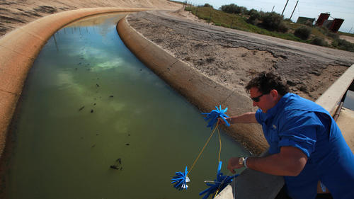 California to use oil waste for farm water