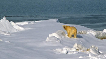 The GOP attack on climate change science takes a big step forward