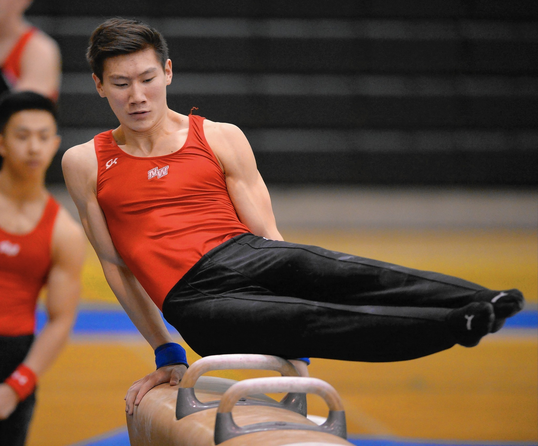 mgc westboro gymnastics meet score