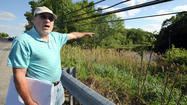 Can fish habitat be protected along Cattail Creek?