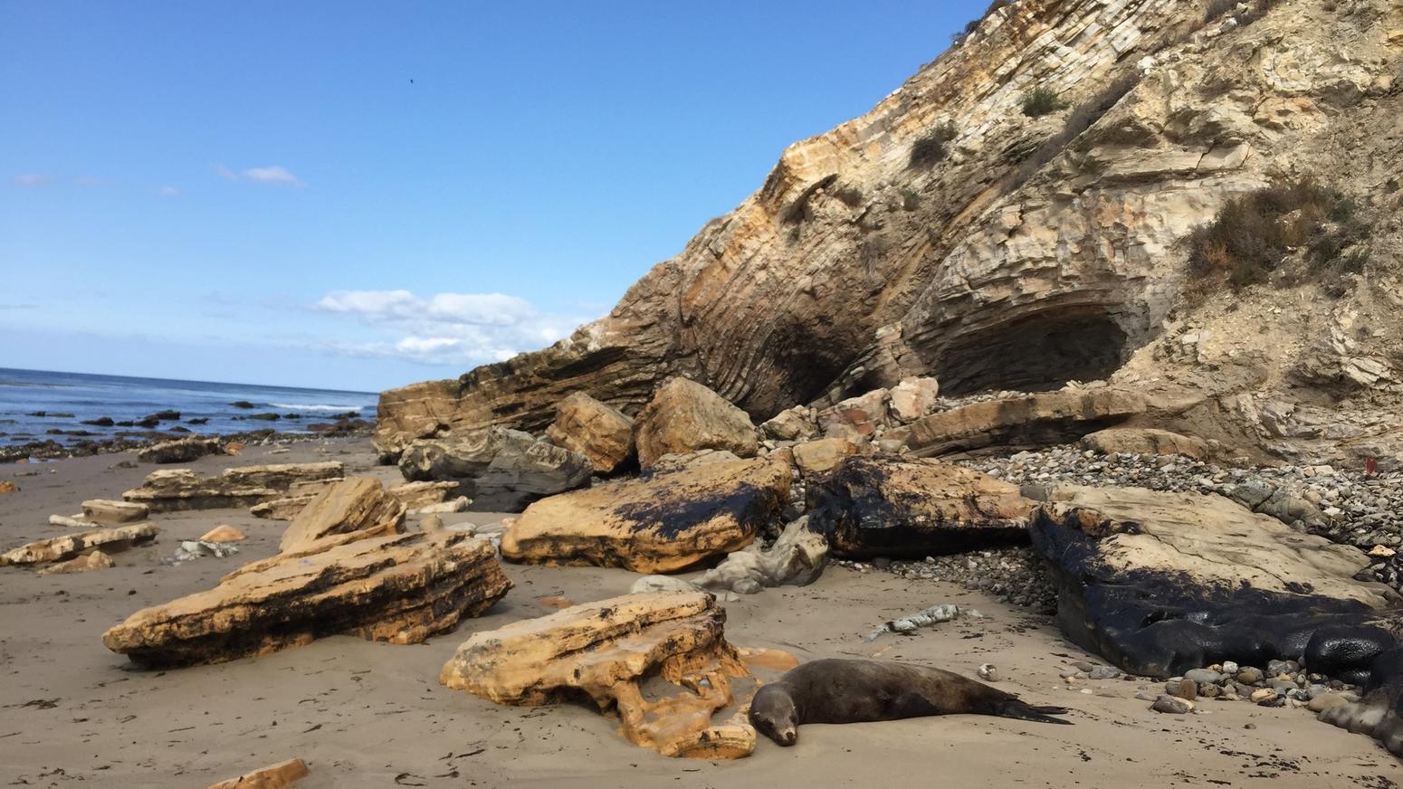 Oil spill on Santa Barbara County coast