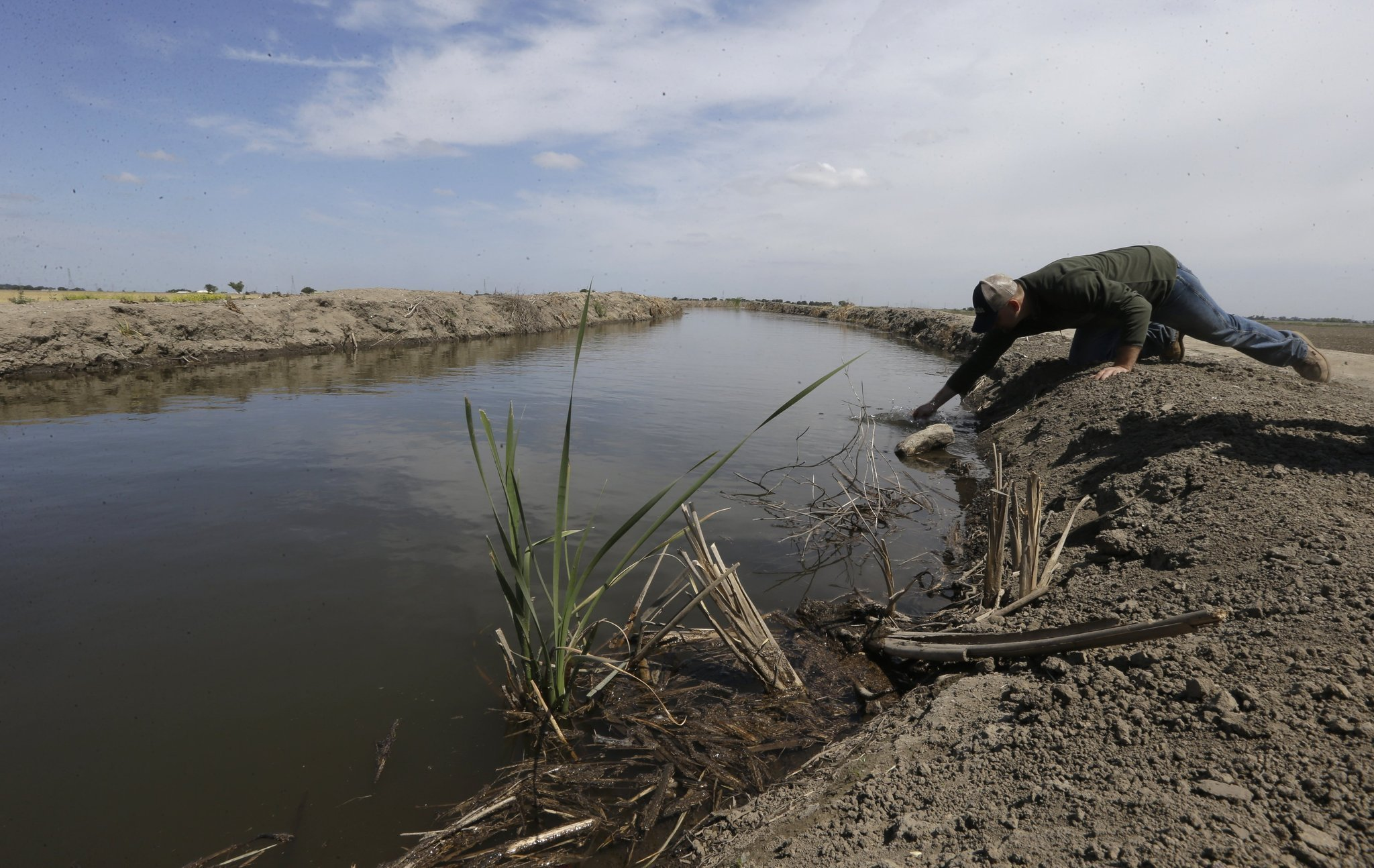 25% voluntary cut in farmers' water use OK'd by California amid drought