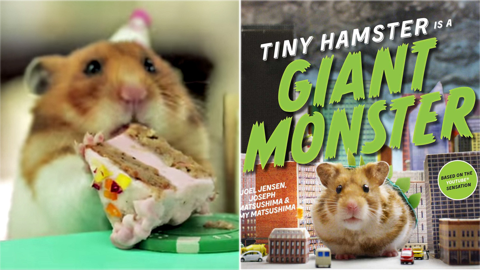 Tiny Hamsters Eating Tiny Food Is Now A Book LA Times - Hamster birthday cake