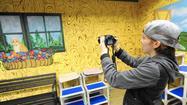 Cat adoption room has Humane Society of Carroll County purring