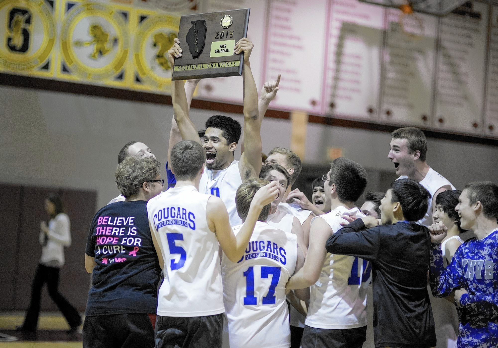 Vernon Hills upsets Barrington to advance to volleyball state - Vernon Hills  Review