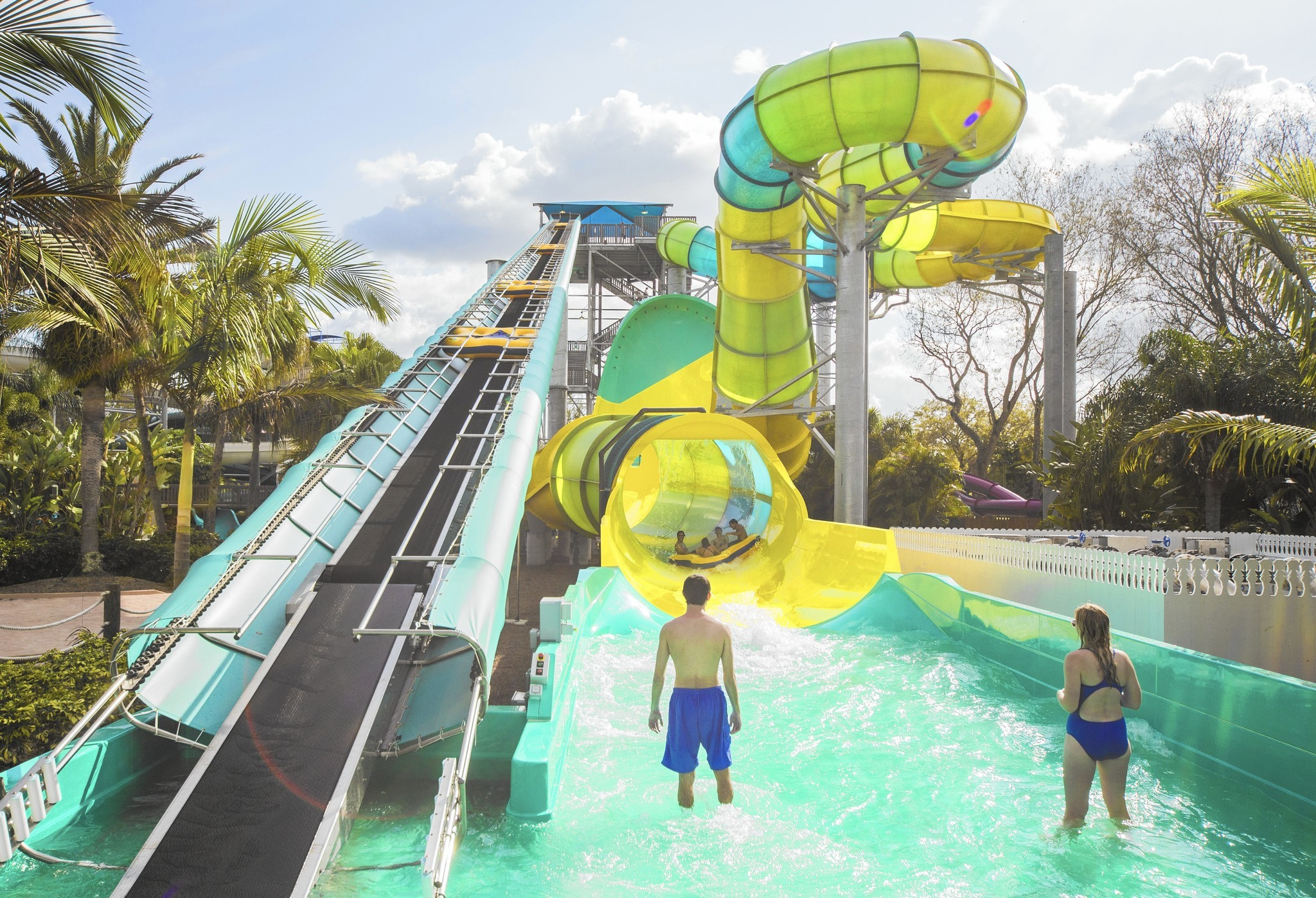Florida water parks what 39 s new in 2015 orlando sentinel Busch gardens tampa water park