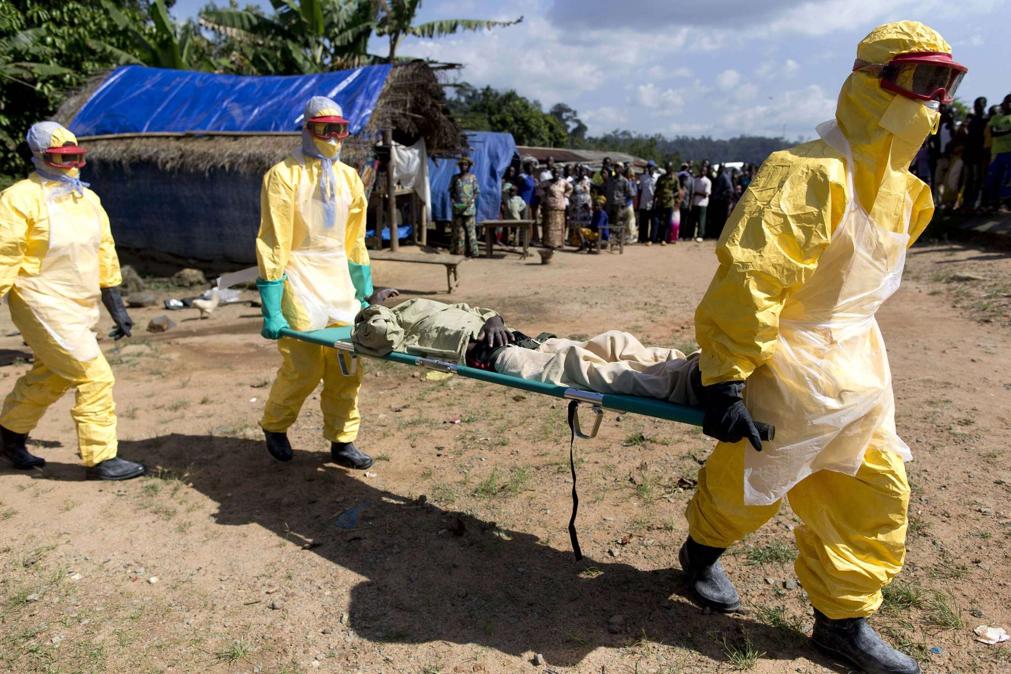the outbreak of the ebola virus in west africa For the first time since december 2013, transmission of the ebola virus in west africa is said to have stopped, according to the world health organization it made the announcement as it declared today that liberia's outbreak has officially ended — the third time it has done so since the largest ebola.