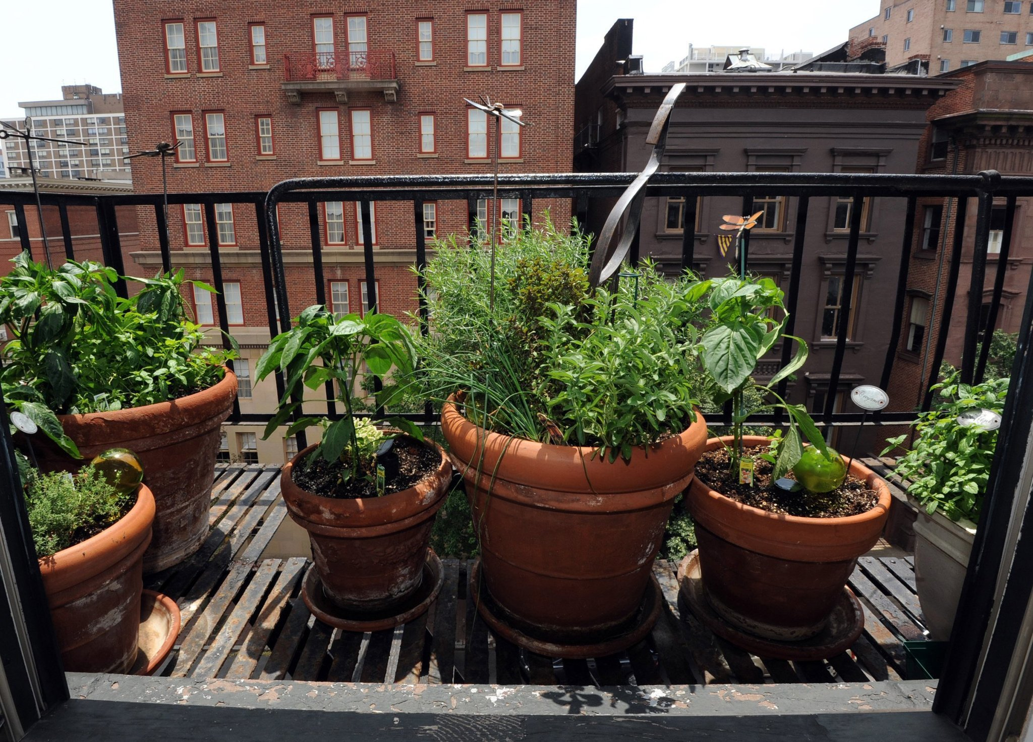For really small spaces consider an herb garden redeye chicago - Herb gardens for small spaces gallery ...