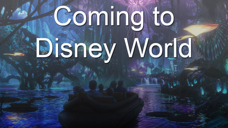 Coming to Walt Disney World
