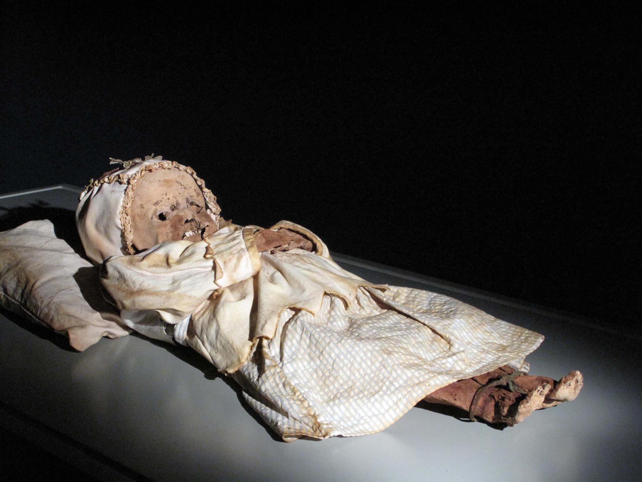 Orlando Science Center Opens Mummies Exhibit